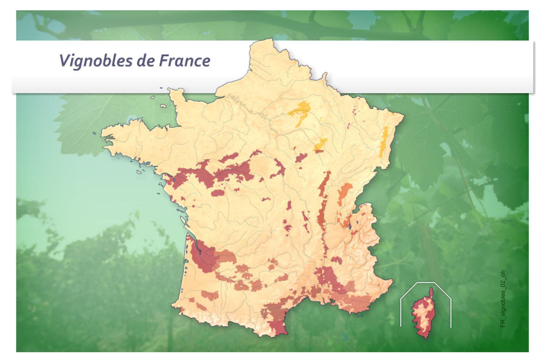Jeux-Geographiques Jeux Gratuits Jeu Vignobles De France dedans Quiz Régions De France