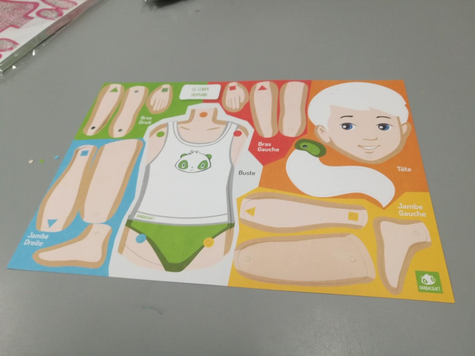La Maternelle De Laurène: Kit Corps Humain De Chez Pandacraft concernant Le Corps Humain En Maternelle