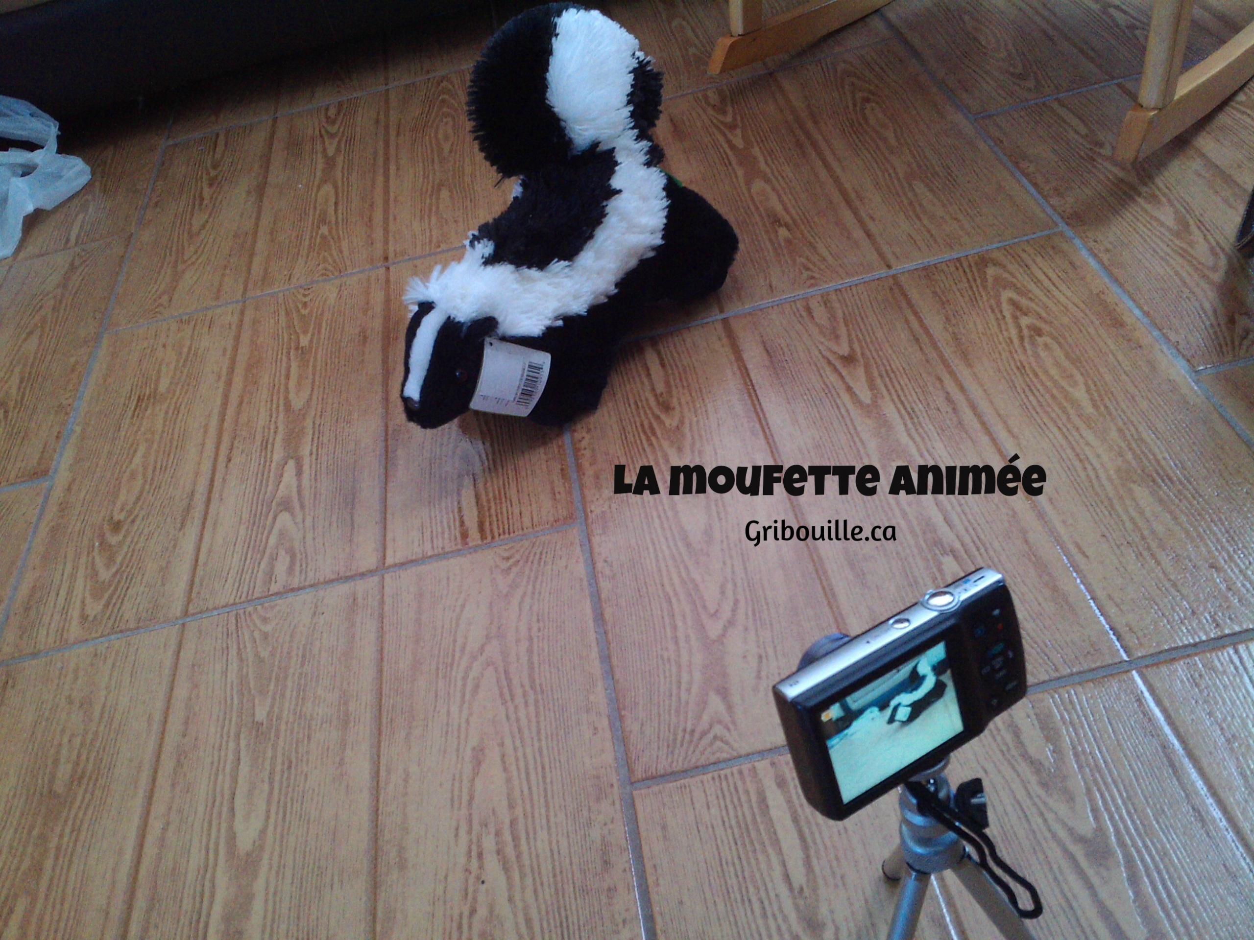 La Moufette Animée - Mes Activités Avec Gribouille encequiconcerne Dessin Moufette