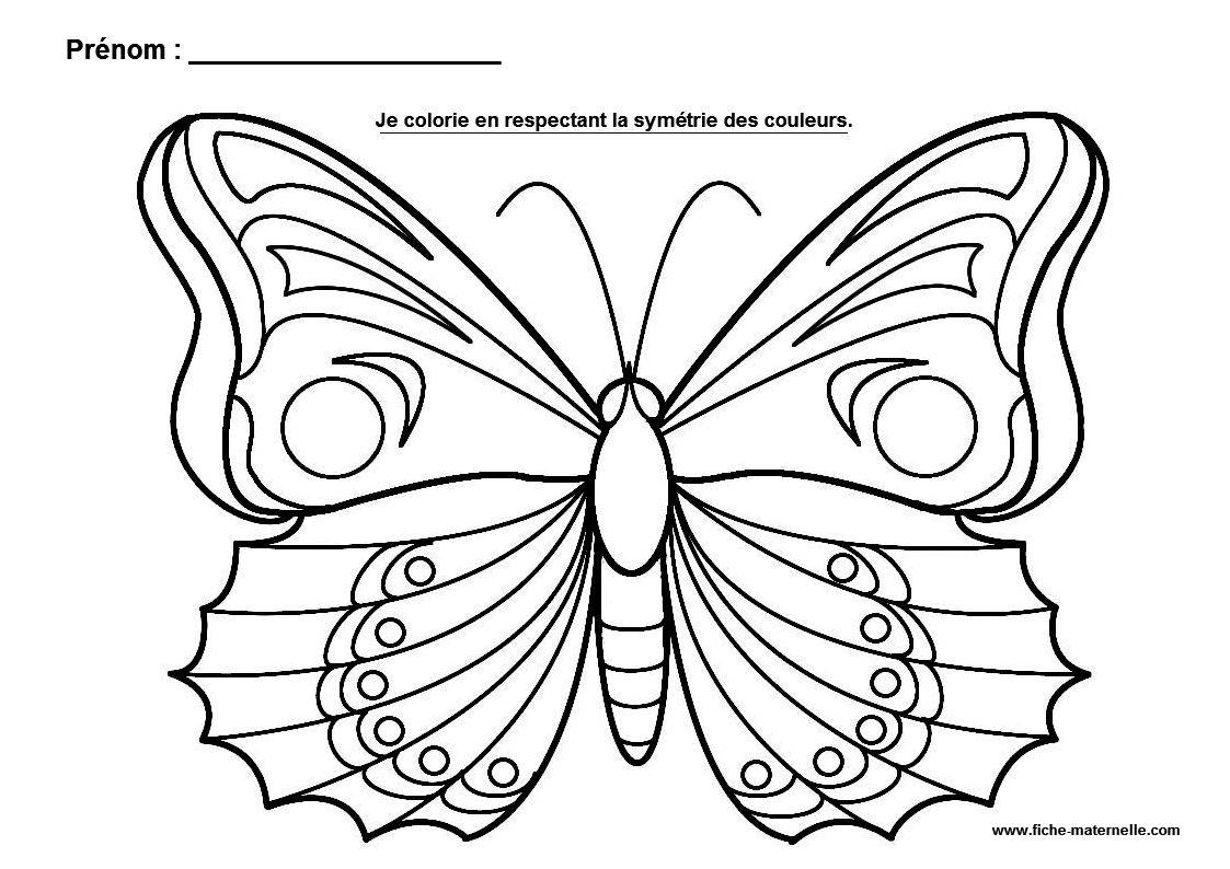 La Symétrie En Maternelle intérieur Papillon À Dessiner