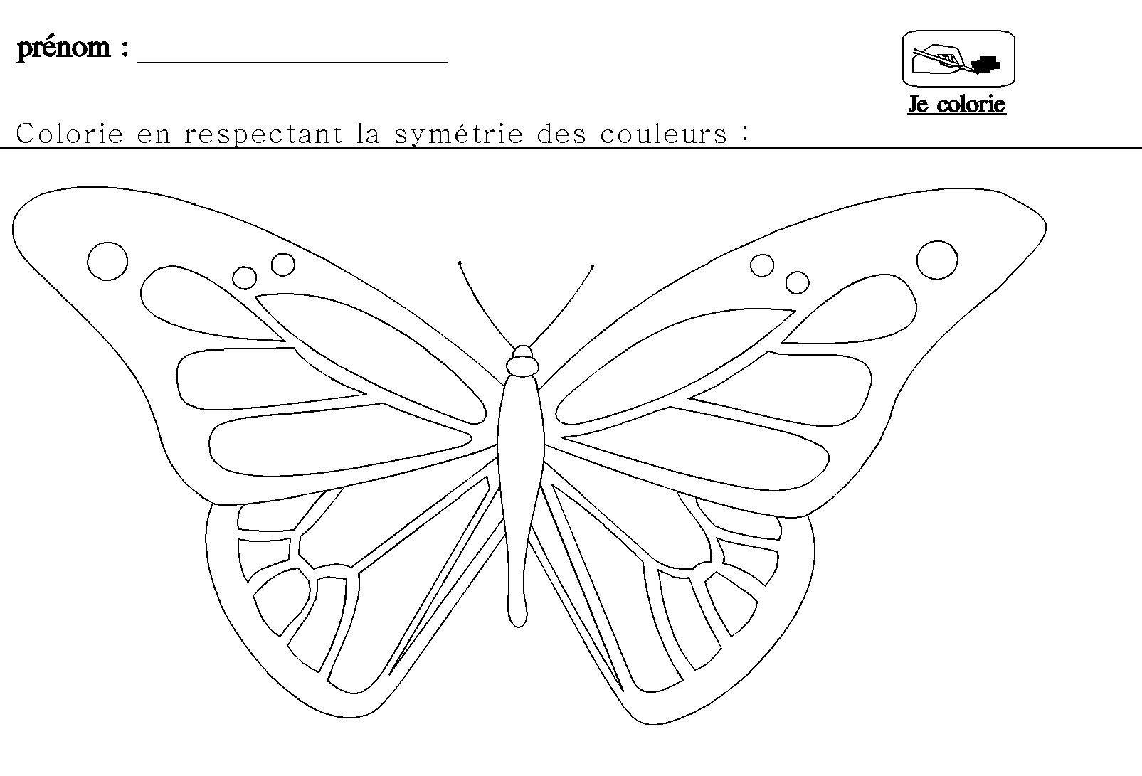 La Symétrie En Maternelle Pour Grande Section | Grande tout Dessin Symétrique A Imprimer