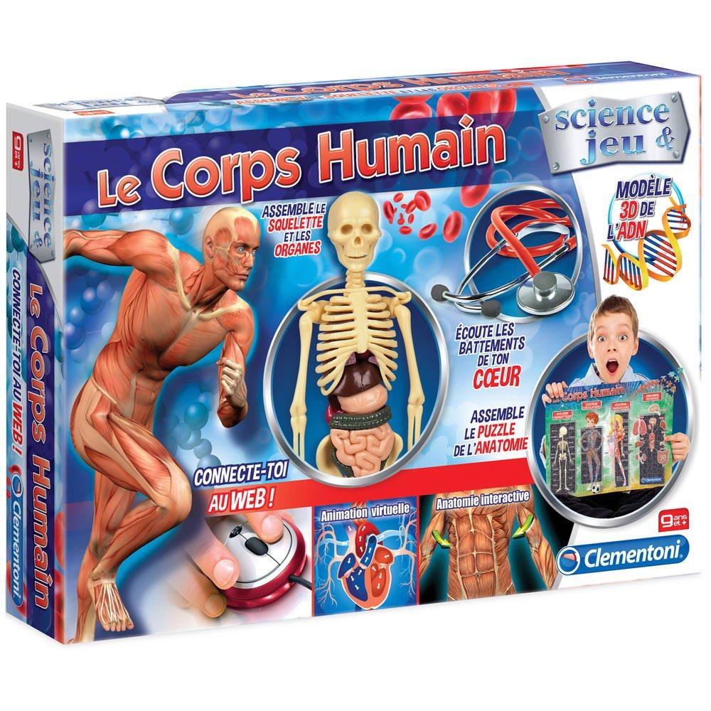 Le Corps Humain | Jeux Educatifs | Jouéclub avec Jeux De Squelette Gratuit