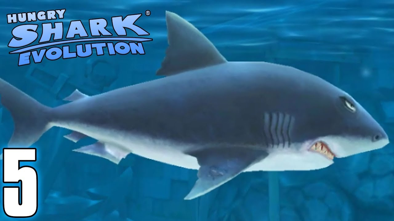 Le Grand Requin Blanc - Hungry Shark Evolution #5 (Fr) encequiconcerne Jeux Gratuit Requin Blanc