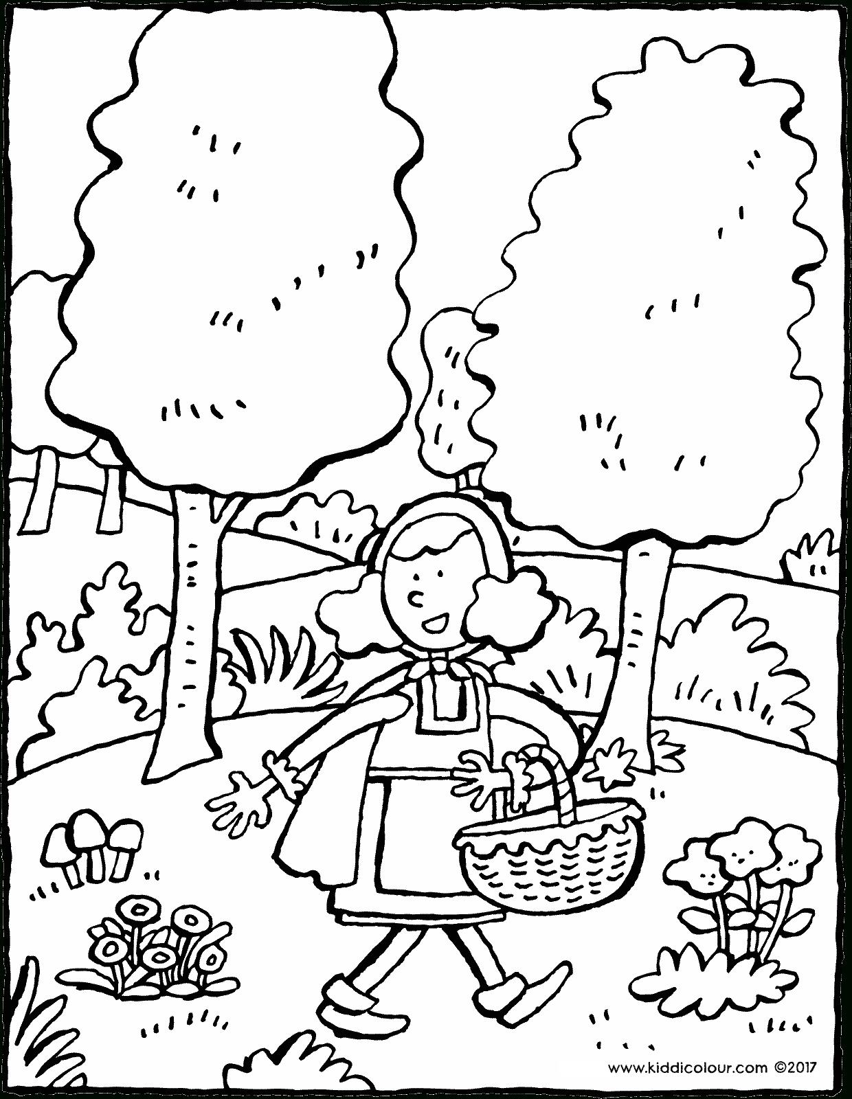 Le Petit Chaperon Rouge Dans La Forêt - Kiddicoloriage avec Dessin De Foret