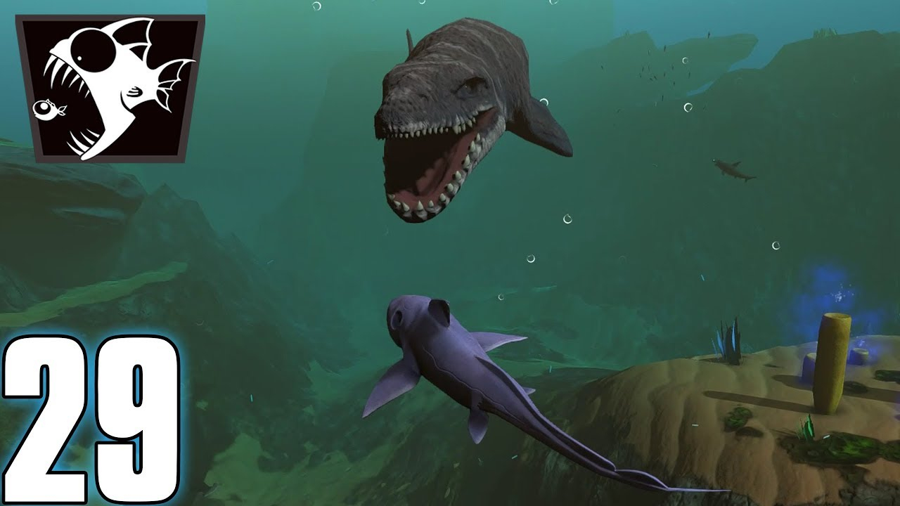 Le Requin Fantôme - Feed And Grow #29 (Fr) encequiconcerne Requin Jeux Video