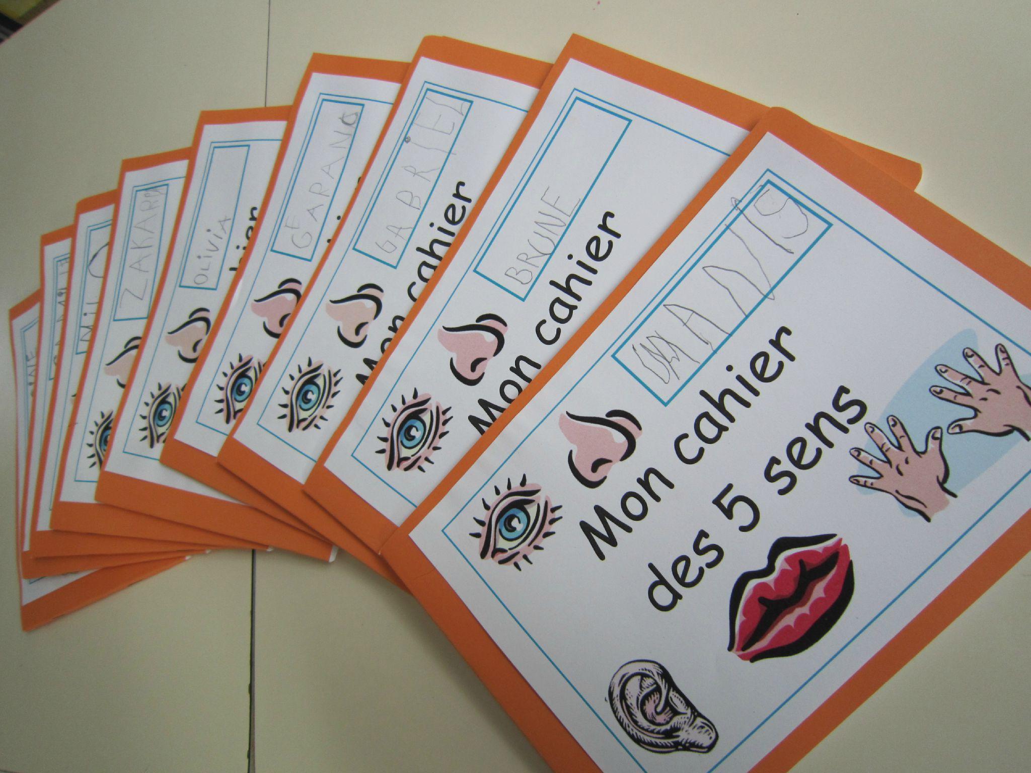 Les 5 Sens #2 - Quoi De Neuf Dans La Classe 9 ? pour Les 5 Sens Activités Maternelle