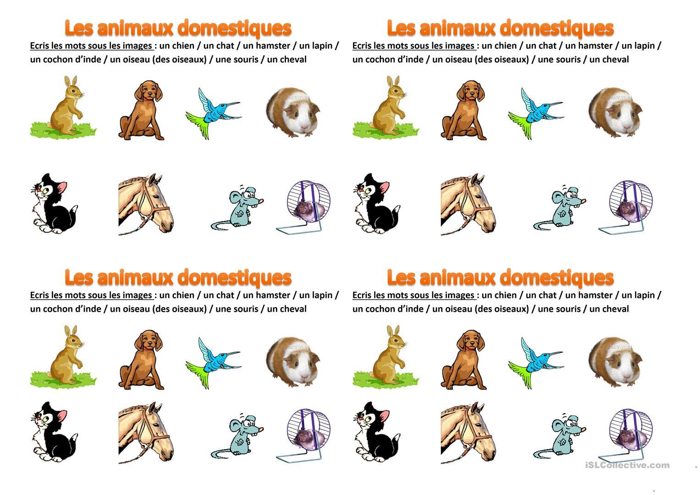 Les Animaux Domestiques - Français Fle Fiches Pedagogiques tout Les Animaux Domestiques En Maternelle