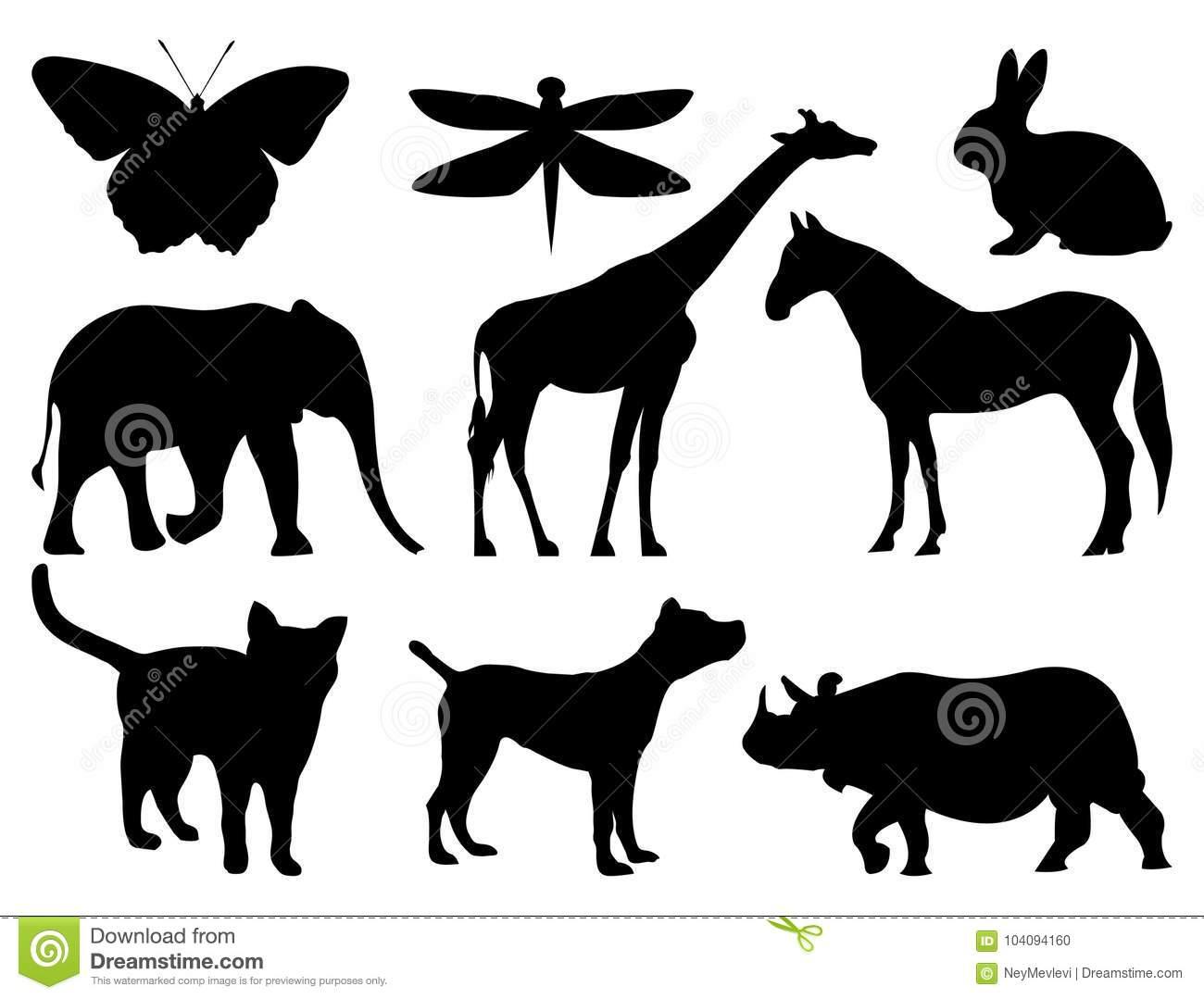 Les Animaux Silhouettent Pour L'éducation Illustration De serapportantà Apprendre Le Nom Des Animaux