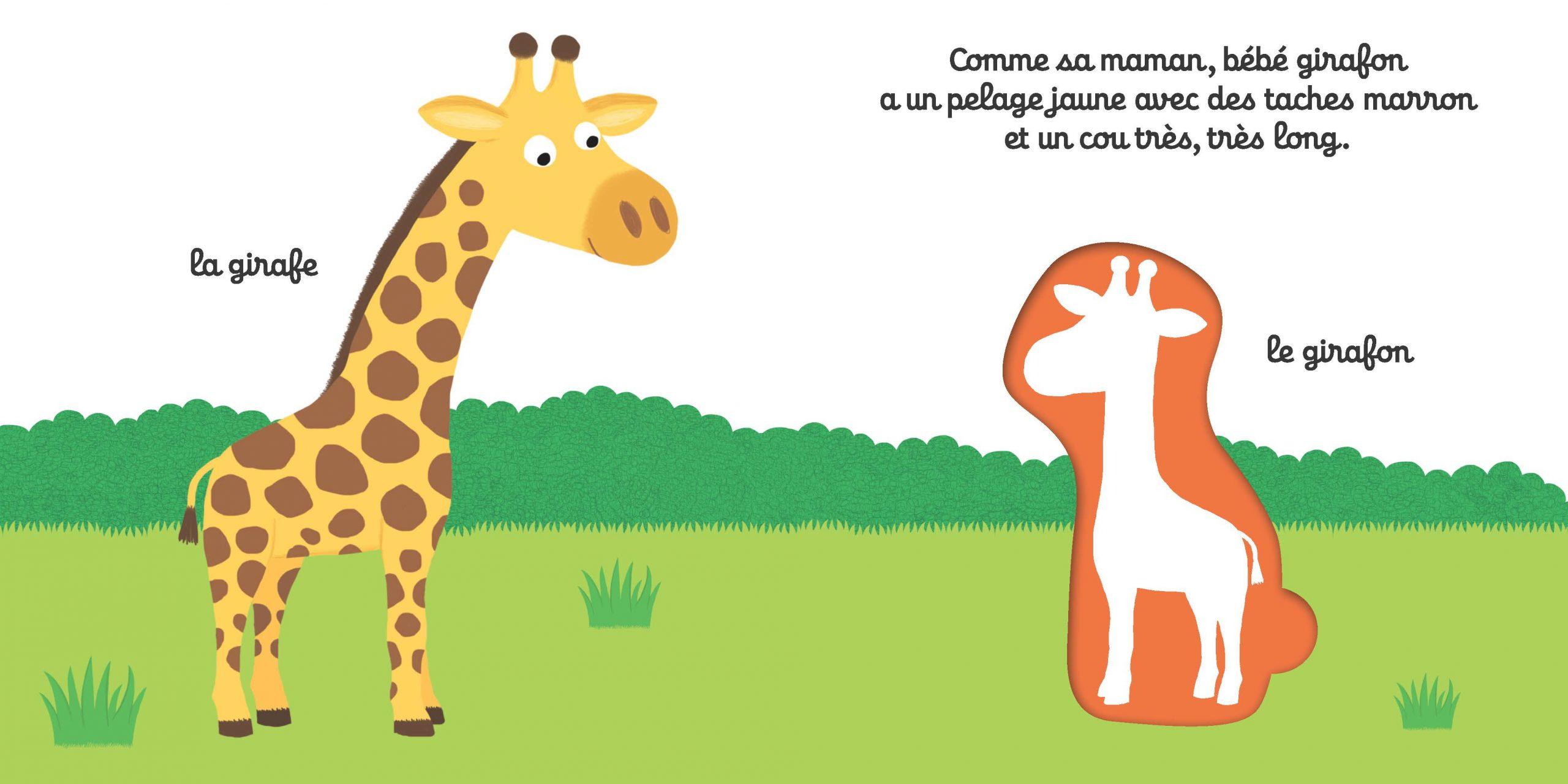 Les Bébés De La Savane - Mon 1Er Imagier À Encastrer concernant Imagier Bébé En Ligne