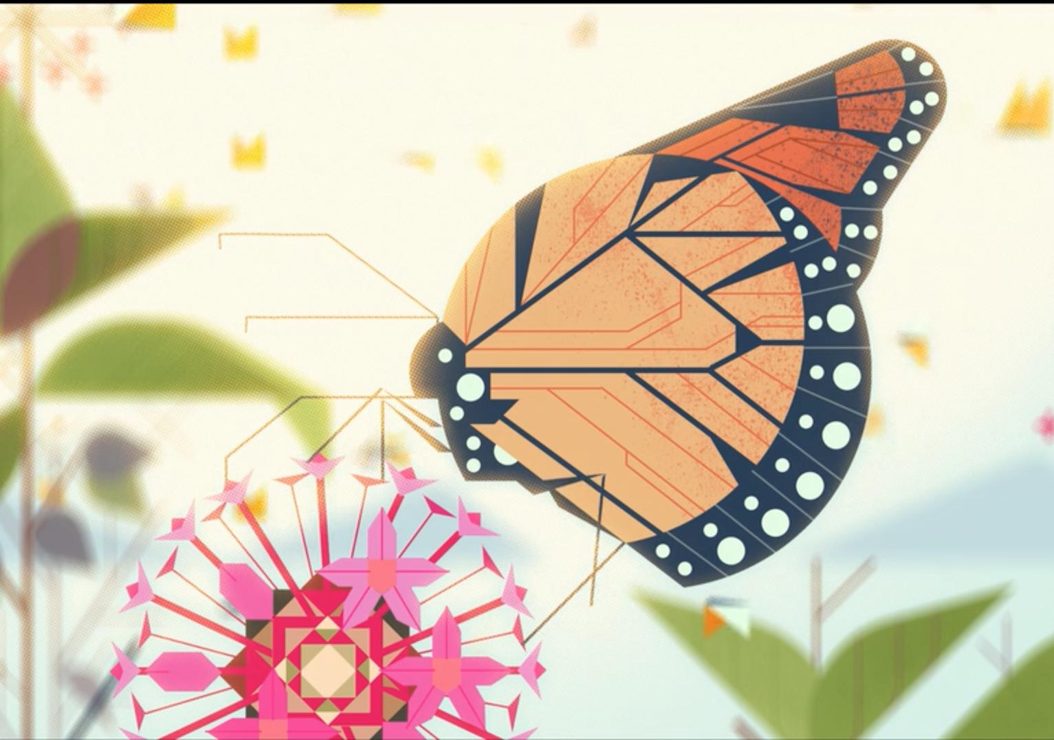 Les Formes Géométriques Dans La Nature : Un Film D'animation à Les Formes Geometrique