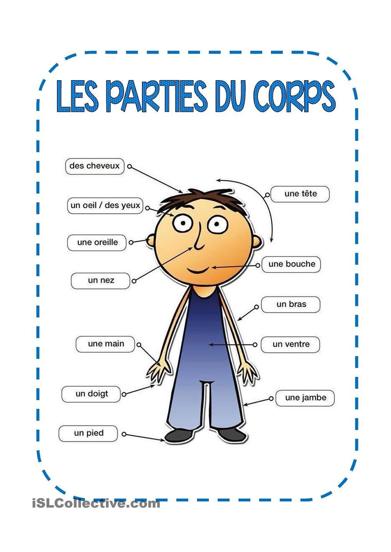 Les Parties Du Corps | Thème Corps Humain Maternelle, Partie pour Le Corps Humain En Maternelle