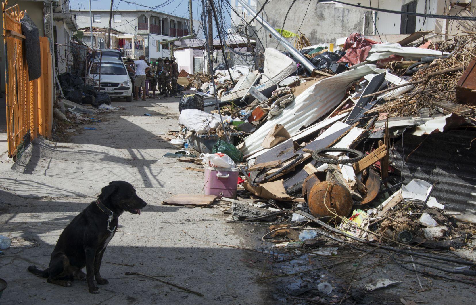 Les Pertes Causées Par Les Catastrophes Naturelles Ont concernant Jeux De Catastrophe Naturel Gratuit