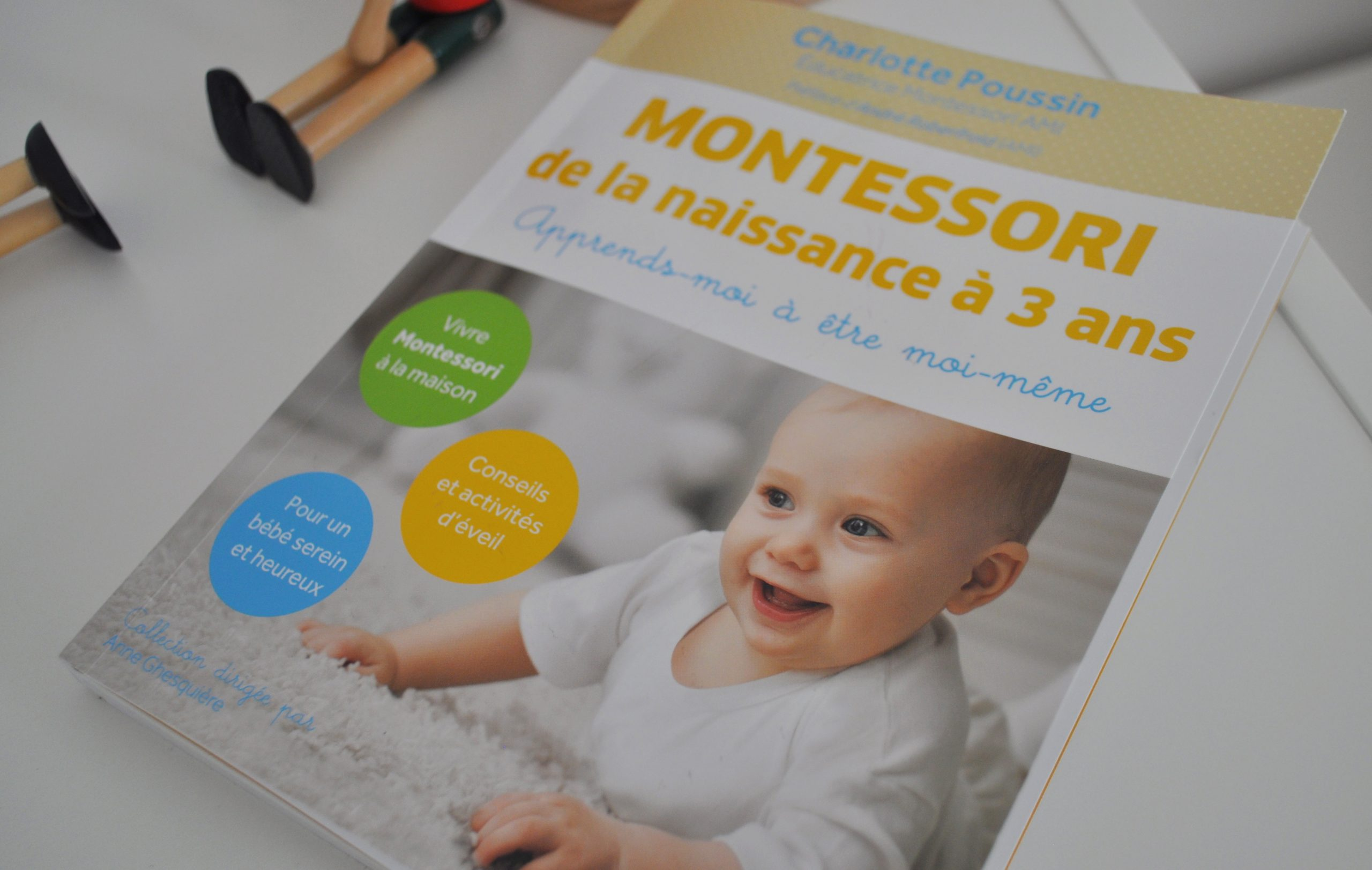 Livre Bebe 1 An Montessori intérieur Activité Montessori 3 Ans