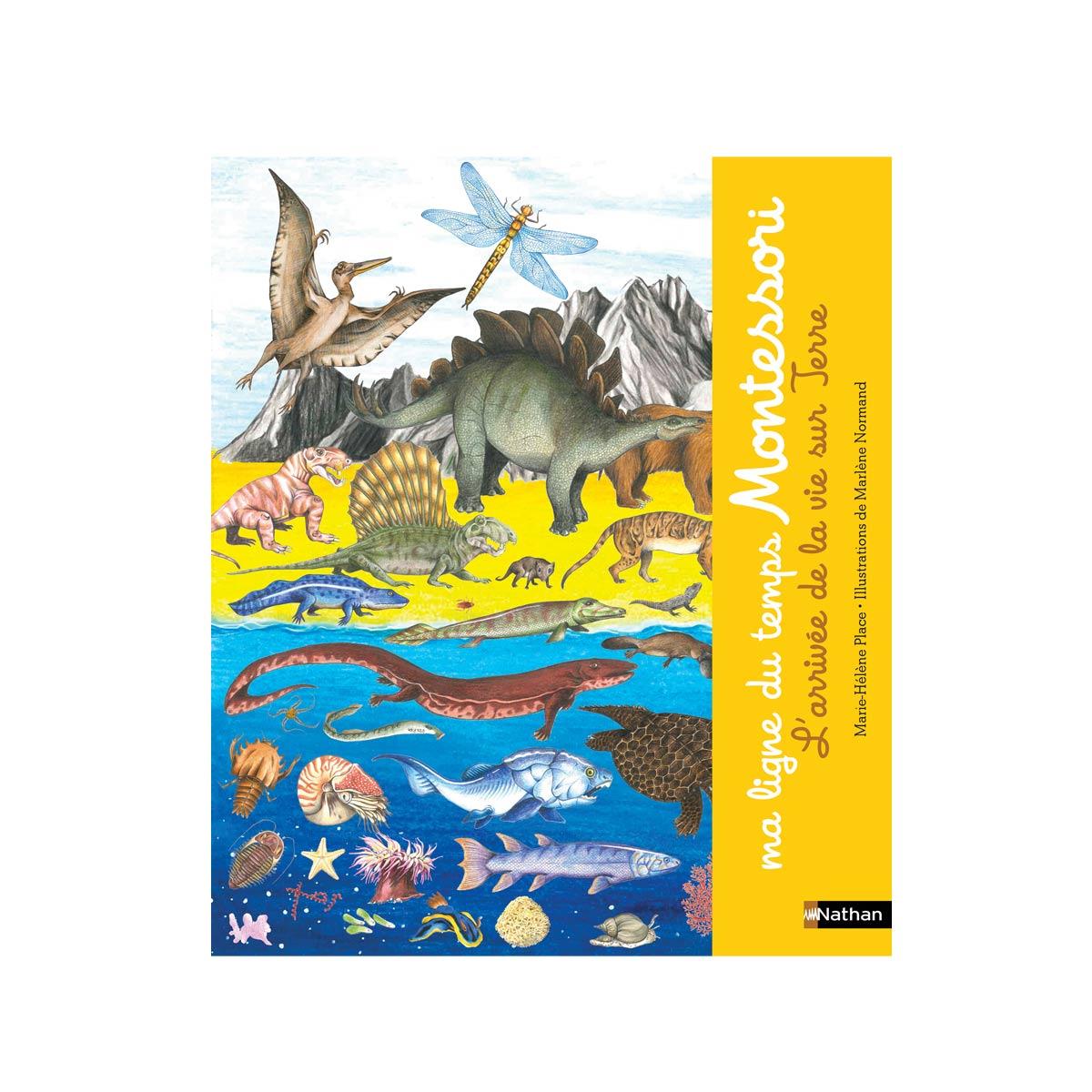 Livre Ma Ligne Du Temps Montessori intérieur Jeux Enfant 3 Ans En Ligne