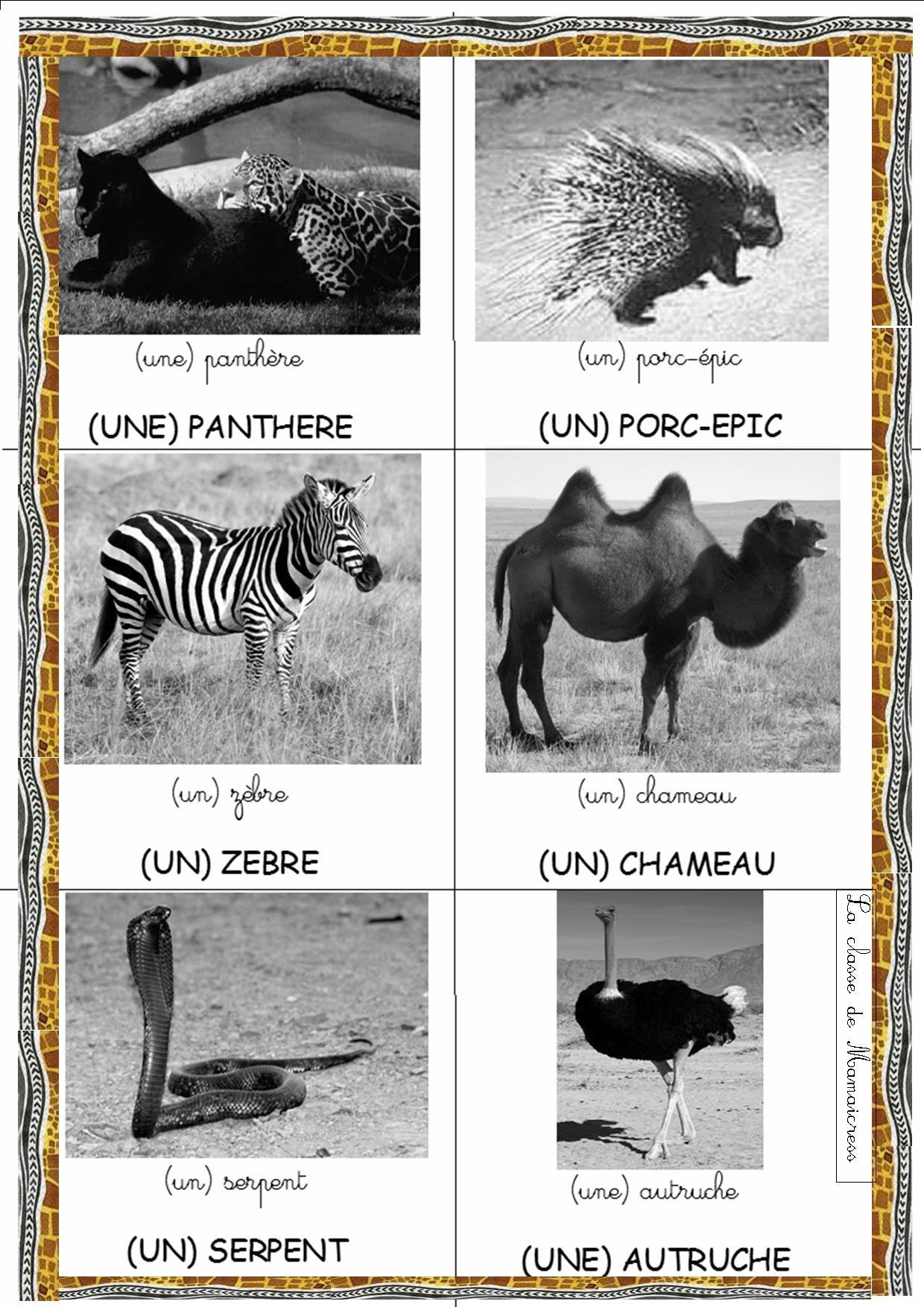 Loto Des Animaux D'afrique - La Classe De Mamaicress intérieur Les Animaux De L Afrique