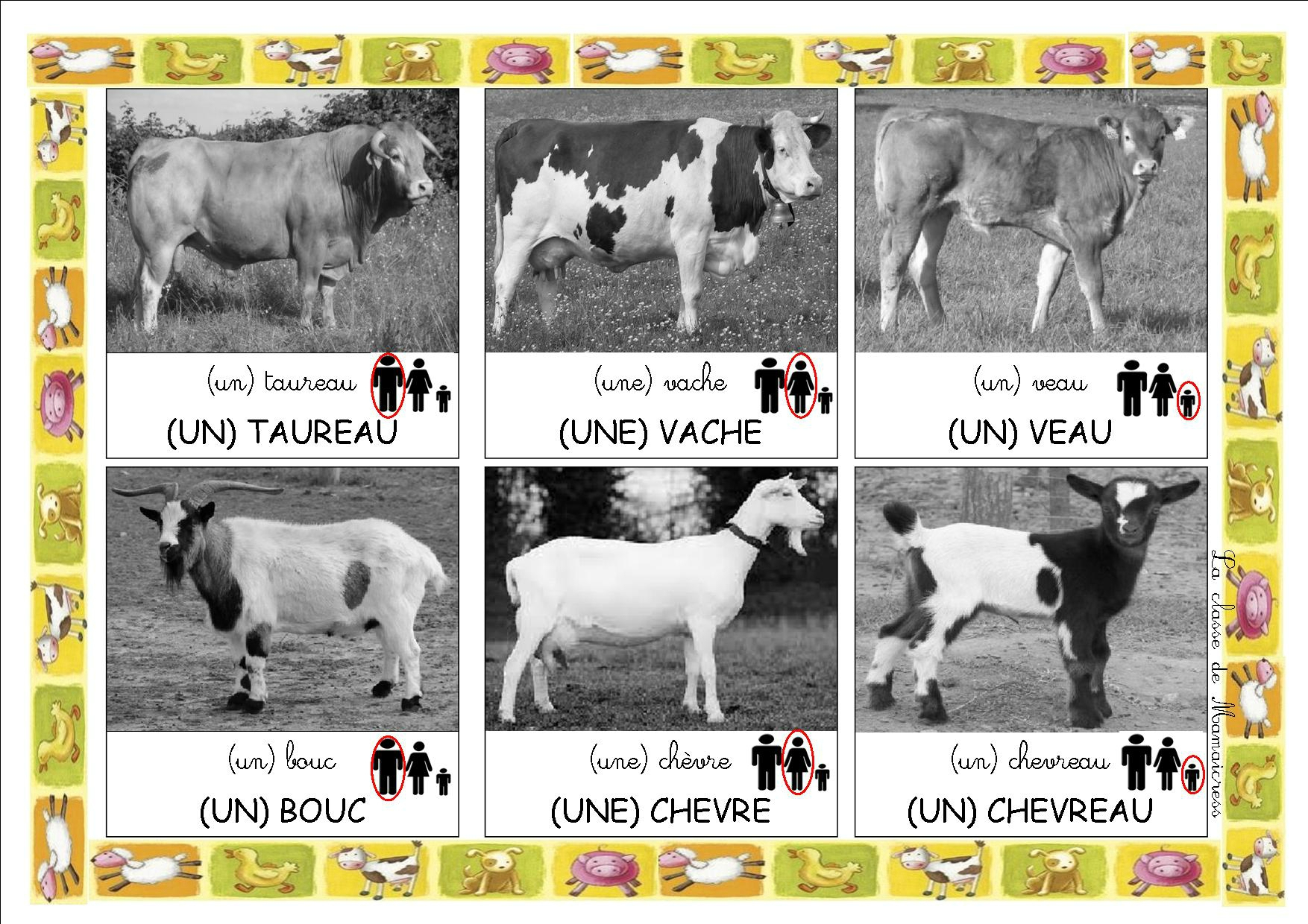 Loto Des Animaux De La Ferme - La Classe De Mamaicress à Apprendre Le Nom Des Animaux