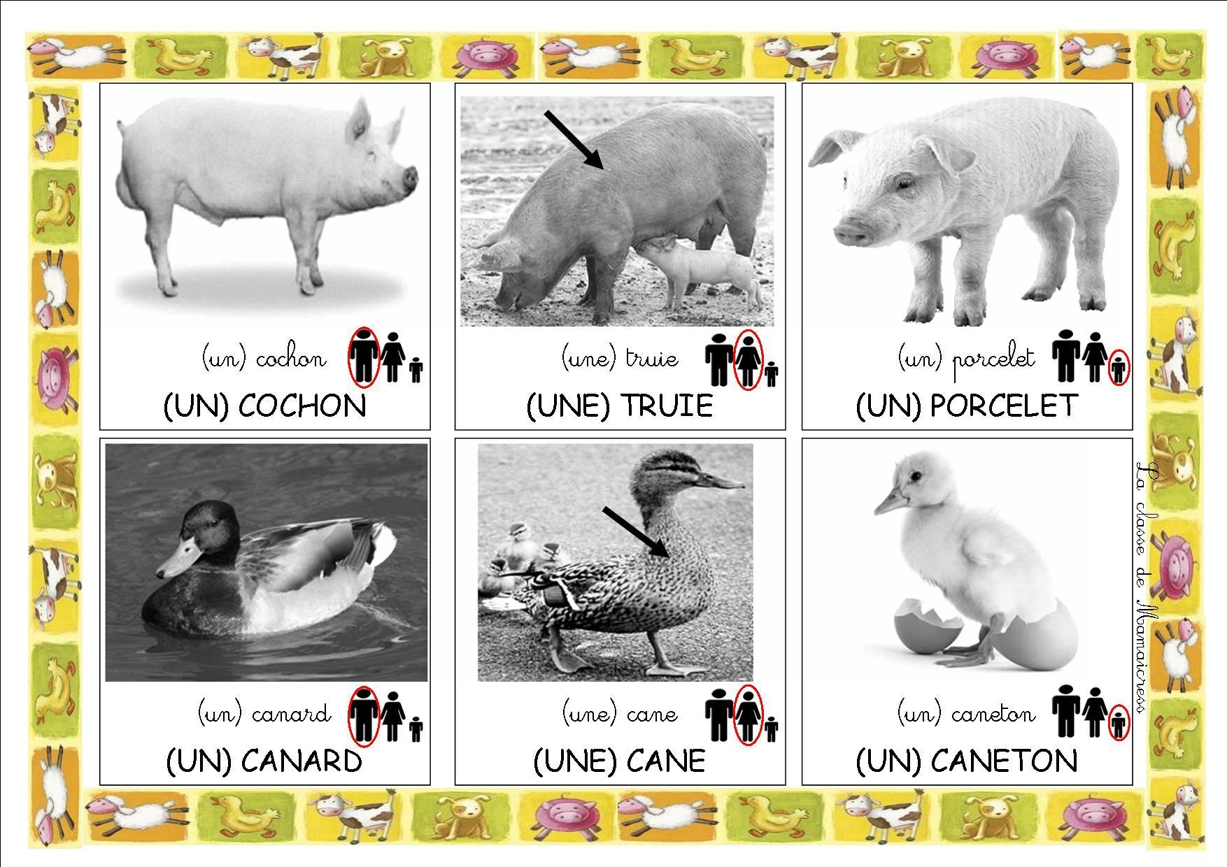 Loto Des Animaux De La Ferme - La Classe De Mamaicress pour Apprendre Le Nom Des Animaux