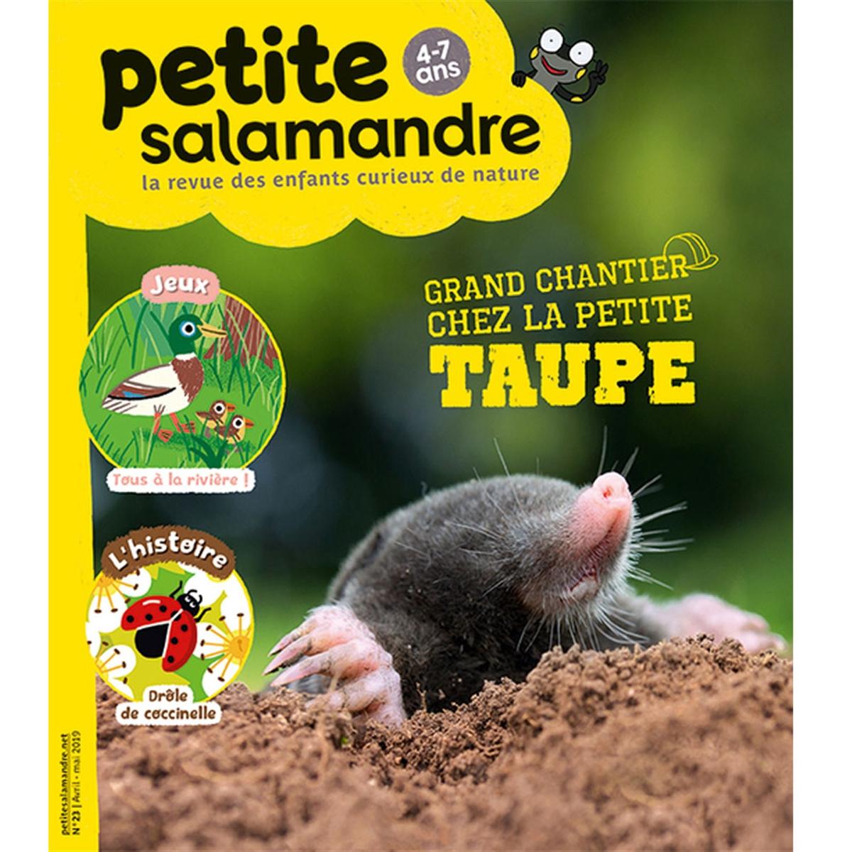 Magazine Petite Salamandre N23 Grand Chantier Chez La Petite Taupe dedans Jeux De Taupe