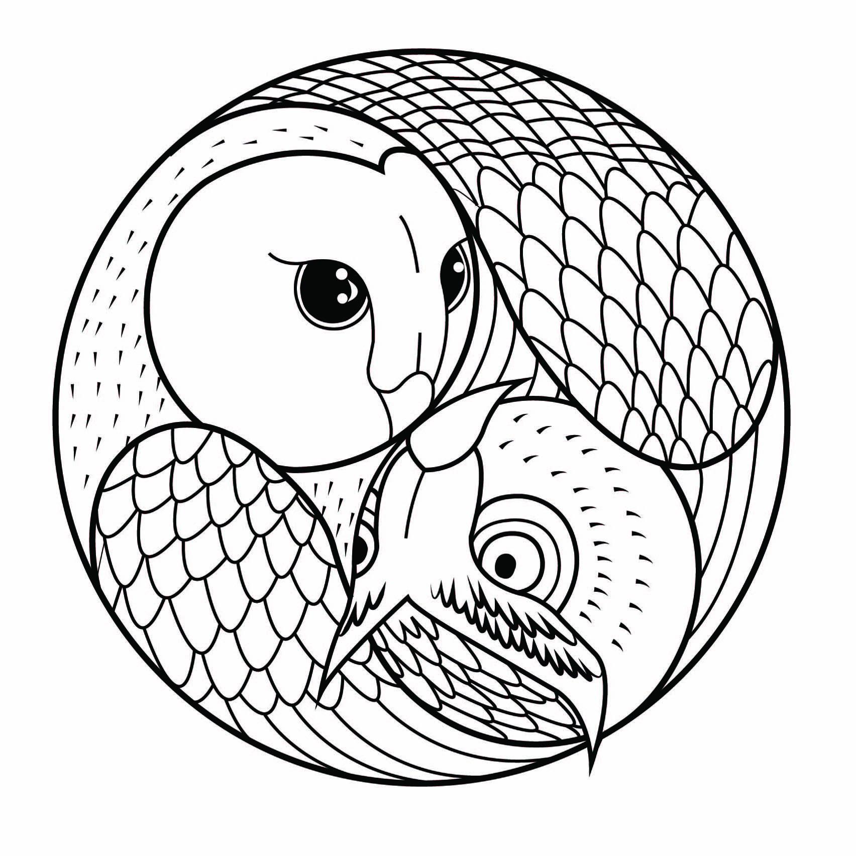 Mandala Hibou Et Chouette - Coloriage Mandalas - Coloriages à Dessin Hibou Facile