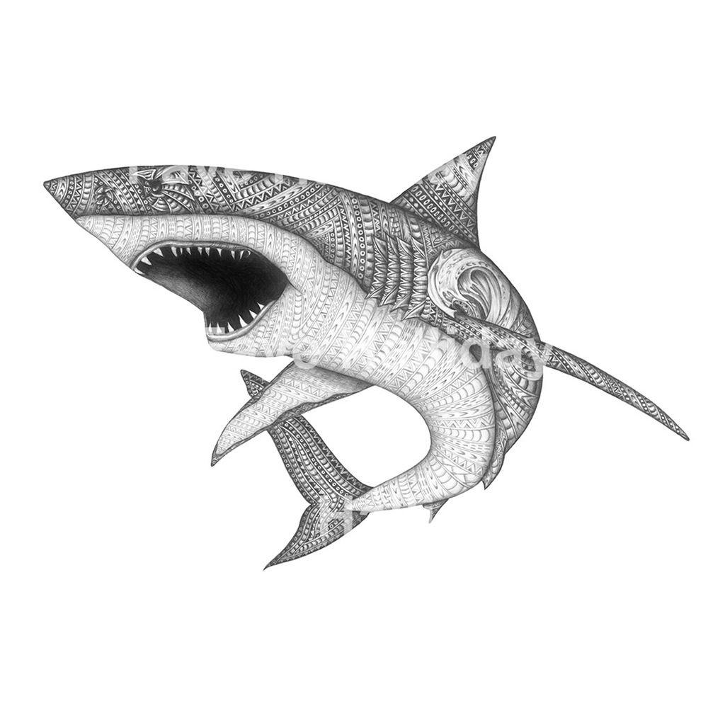 Mandala Requin - Recherche Google | Mandala, Mandala Dessin encequiconcerne Dessin De Requin À Imprimer