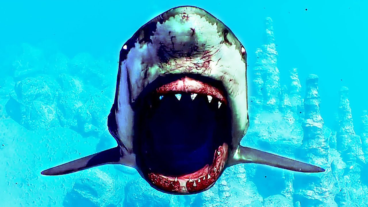 Maneater Bande Annonce (2020) Jeu De Requin concernant Requin Jeux Video