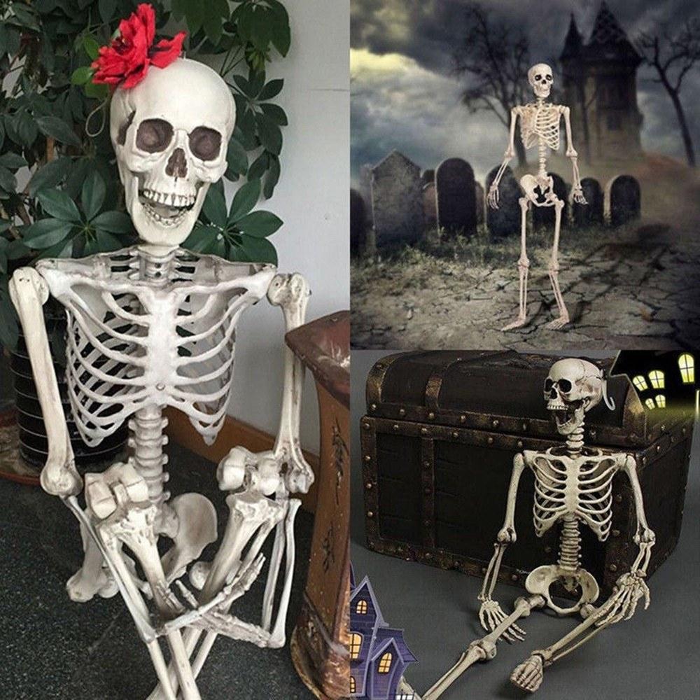 Meilleur Halloween, Os, Corps Humain, Squelette, Suspendu, #1 Vente En  Ligne | Cafago destiné Jeux De Squelette Gratuit