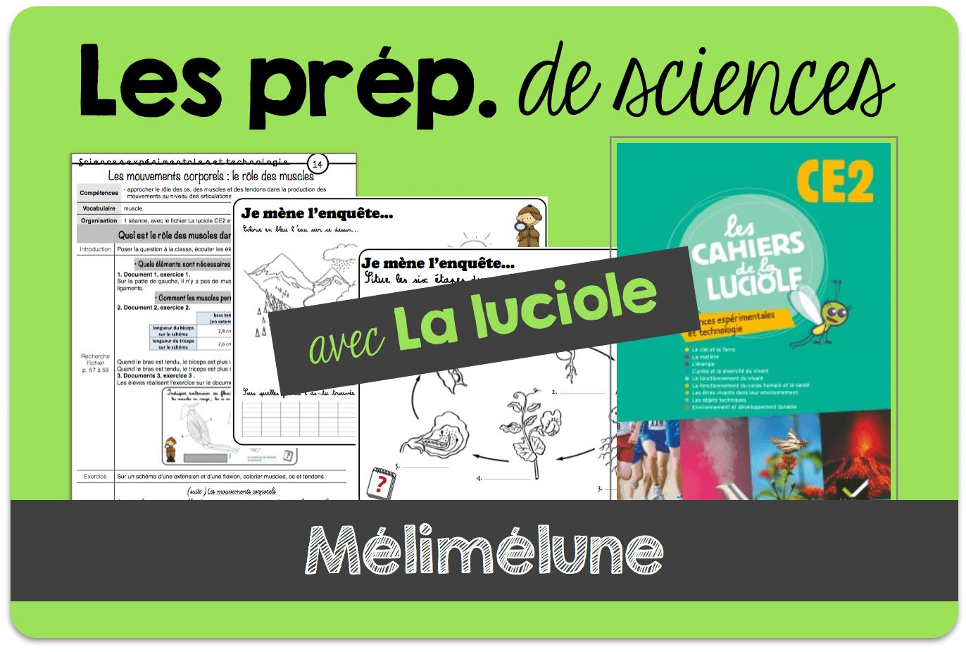 Mes Fiches De Préparation En Sciences - Mélimélune intérieur Cours Ce2 A Imprimer