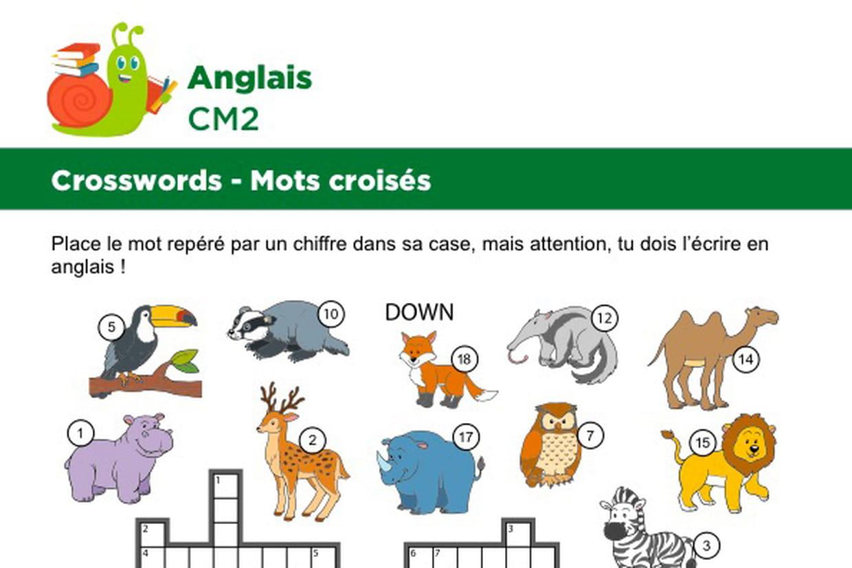 Mots Croisés En Anglais Sur Le Thème Des Animaux Sauvages pour Apprendre Le Nom Des Animaux