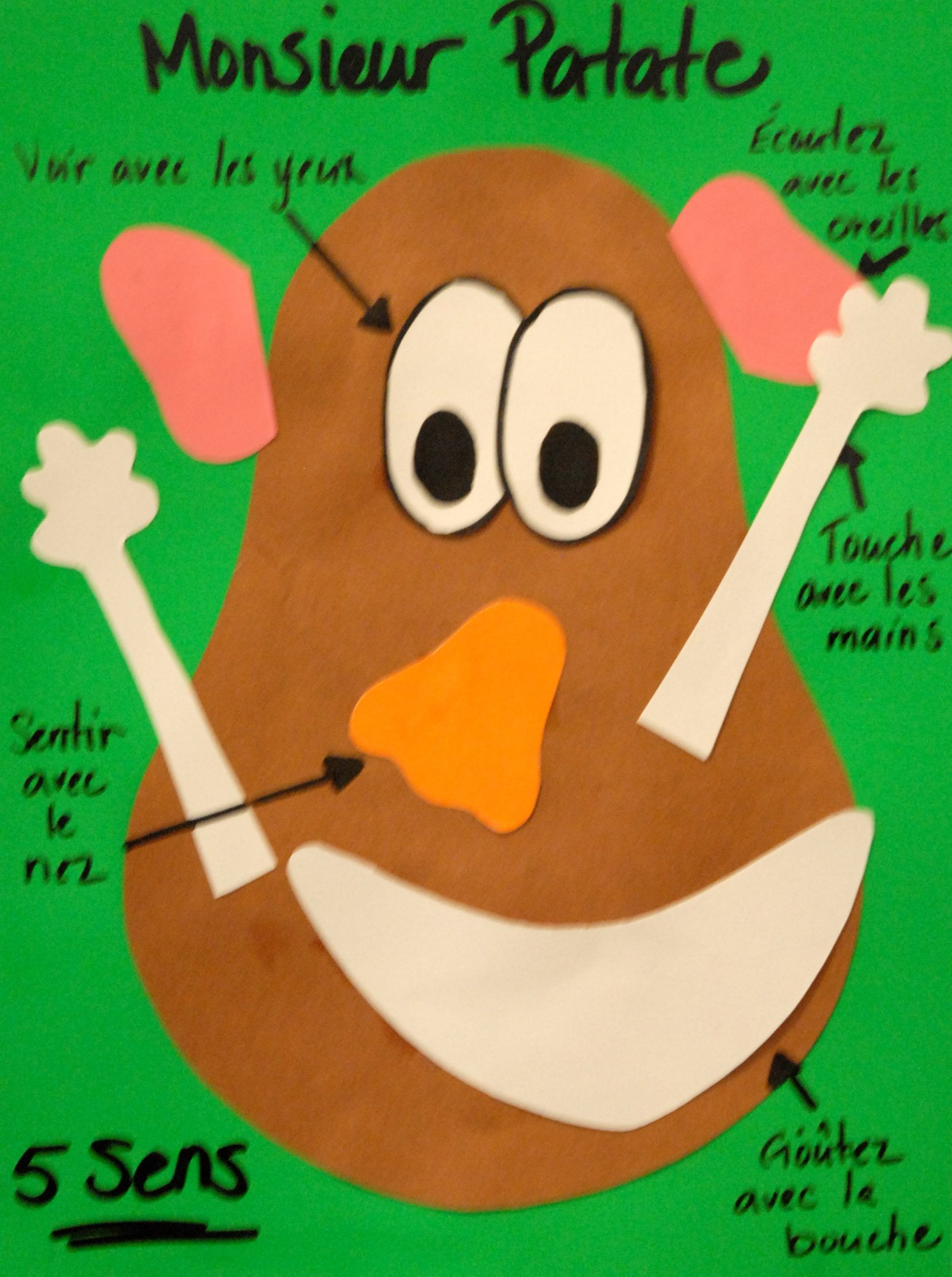 Mr. Po Head's 5 Senses-Monsieur Patate | 5 Sens encequiconcerne Les 5 Sens Activités Maternelle