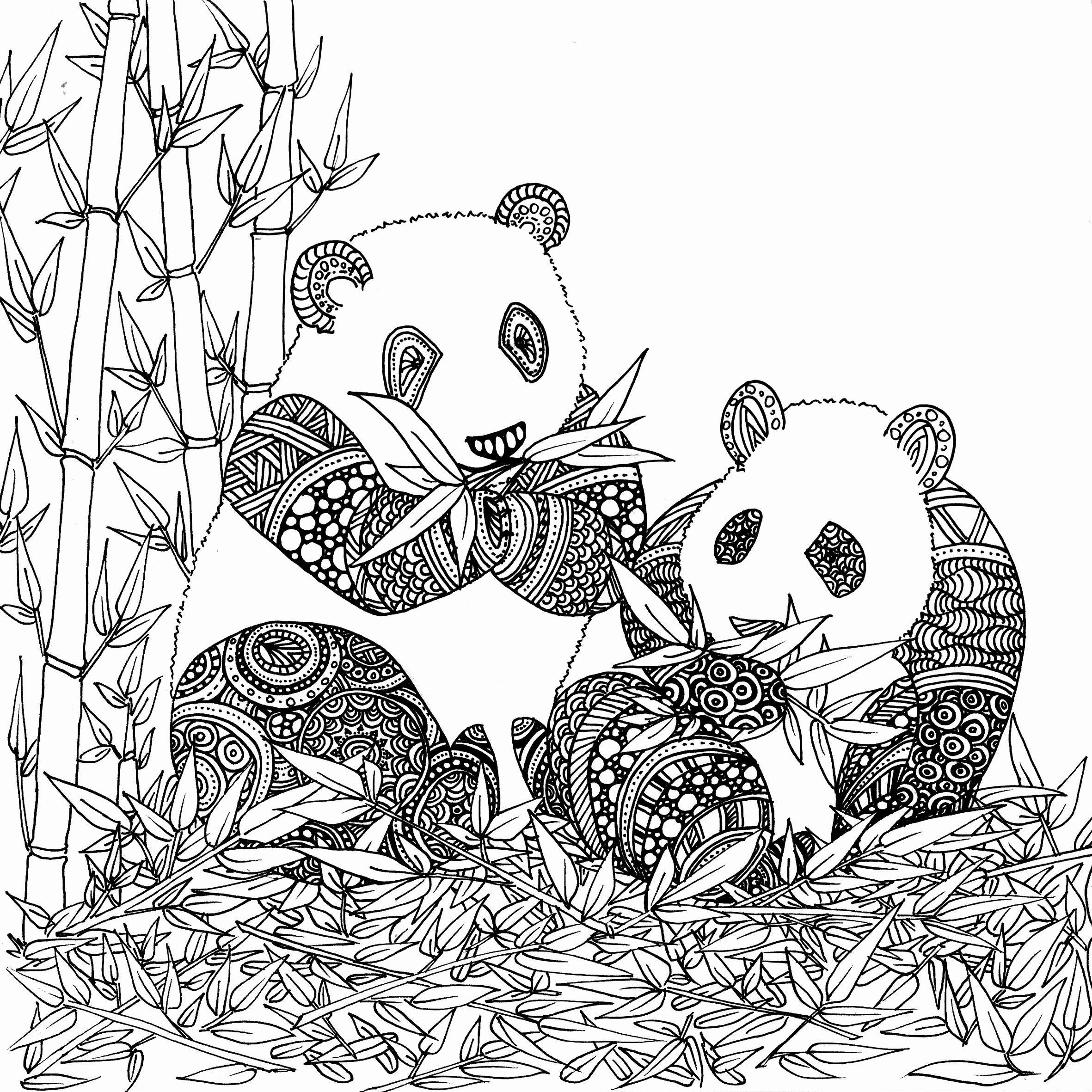 New Coloriage Panda Coloriage Panda . New Coloriage Panda concernant Panda À Colorier