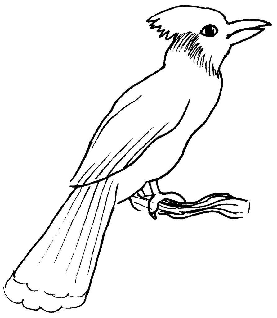 Oiseaux #90 (Animaux) – Coloriages À Imprimer dedans Coloriage Afrique À Imprimer