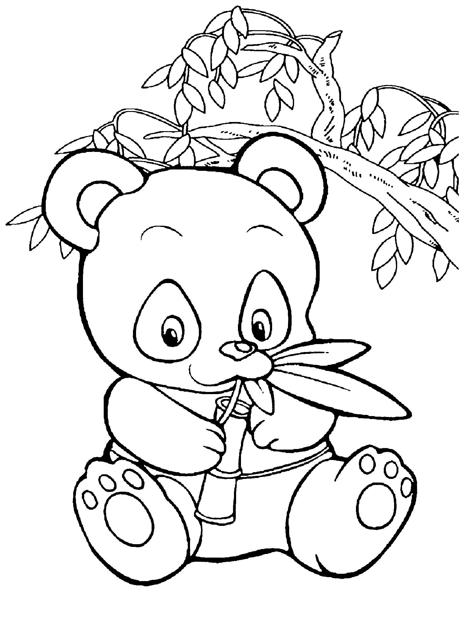 Panda ‡ Imprimer Unique Panda Coloring Pages For Preschool intérieur Panda À Colorier