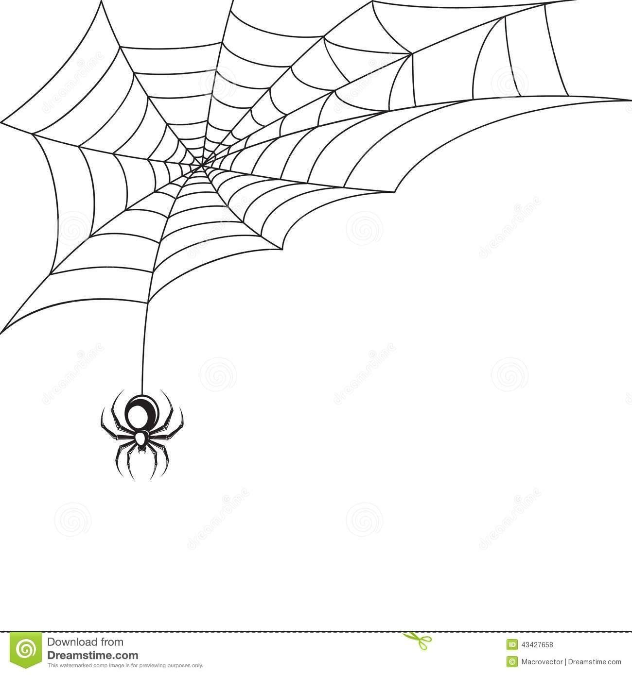Papier Peint De Toile D'araignée Illustration De Vecteur encequiconcerne Dessin Toile Araignée