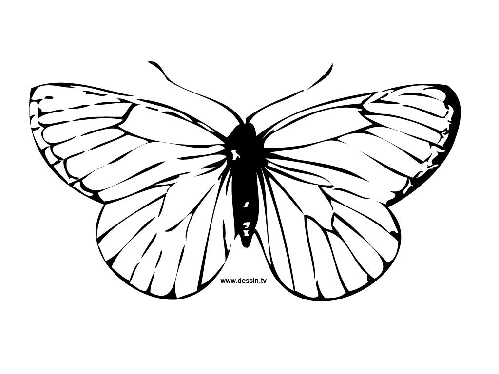 Papillon #15 (Animaux) – Coloriages À Imprimer encequiconcerne Dessin A Imprimer Papillon Gratuit