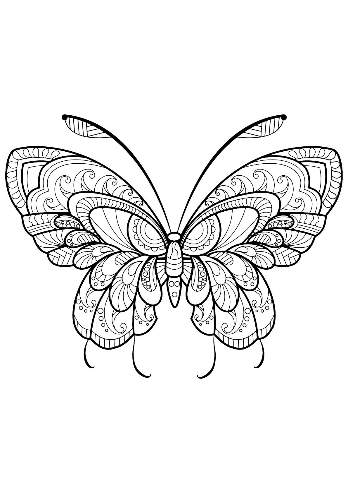 Papillon Jolis Motifs 11 - Papillons & Insectes - Coloriages intérieur Dessin Papillon À Colorier