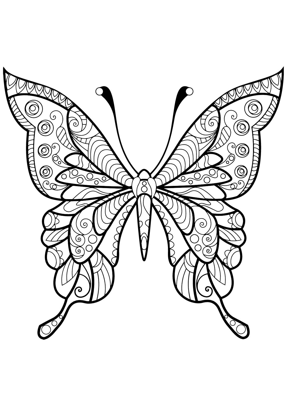 Papillon Jolis Motifs 4 - Papillons & Insectes - Coloriages dedans Dessin Papillon À Colorier