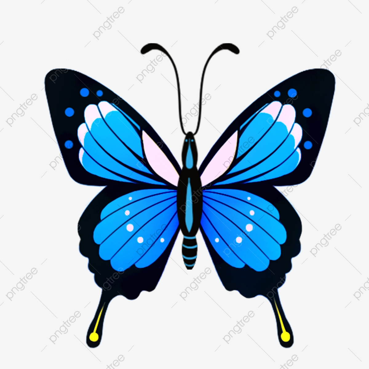 Papillon Papillon Dessin Animé Papillon Dessiné À La Main avec Papillon À Dessiner