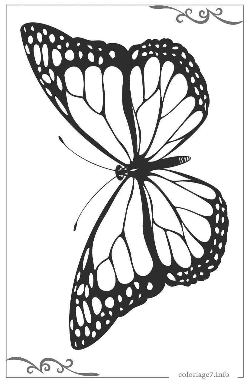Papillons Dessin A Imprimer Et Dessin A Colorier Gratuit intérieur Dessin A Imprimer Papillon Gratuit