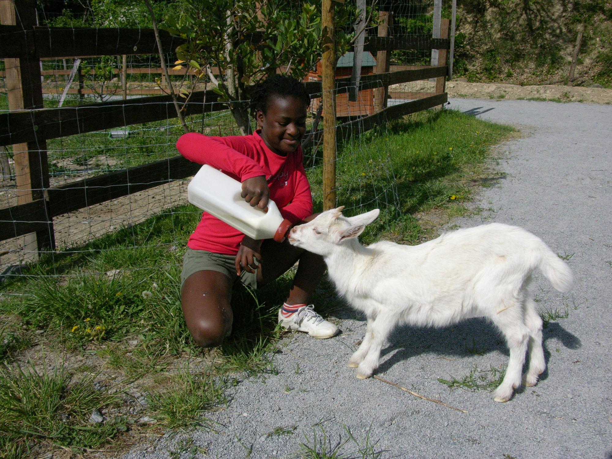 Parc Animalier De Lussas - Ardèche encequiconcerne Jeux De Ferme Gratuit Avec Des Animaux