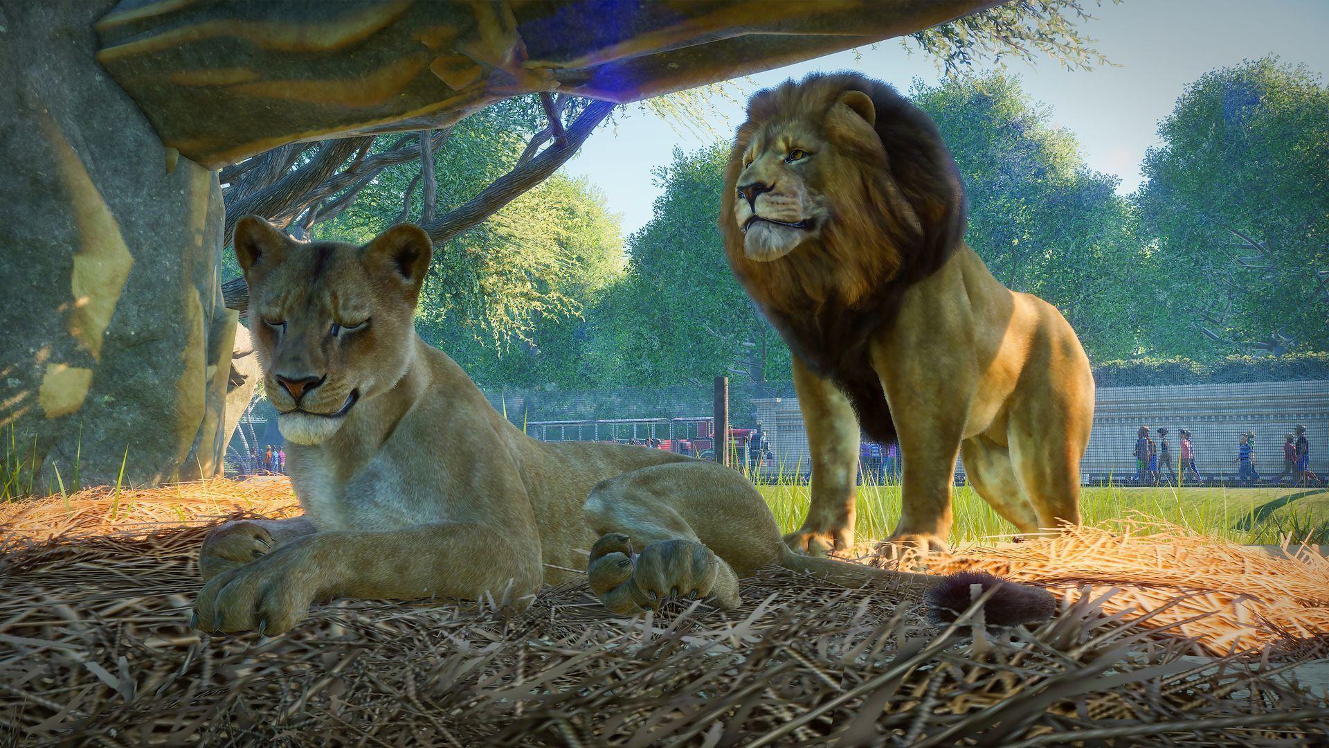 Planet Zoo : Notre Test Sur Pc - Gamekult intérieur Jeux D Animaux Gratuit