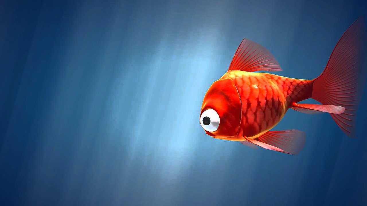 Poisson Aquarium intérieur Poisson Rouge Jeux Gratuit En Ligne