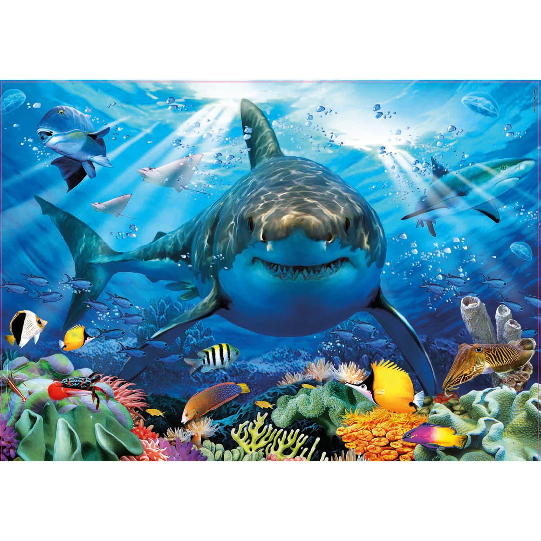 Puzzle 500 Pièces : Grand Requin Blanc pour Jeux Gratuit Requin Blanc