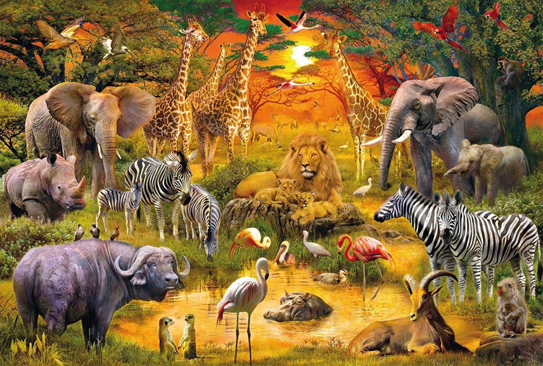 Puzzle Les Animaux D'afrique avec Les Animaux De L Afrique