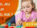 Quels jeux pour un enfant de 2 à 3 ans?  - Quel Jeu a versé Quel Âge?  pour Jeux Bebe 3 Ans