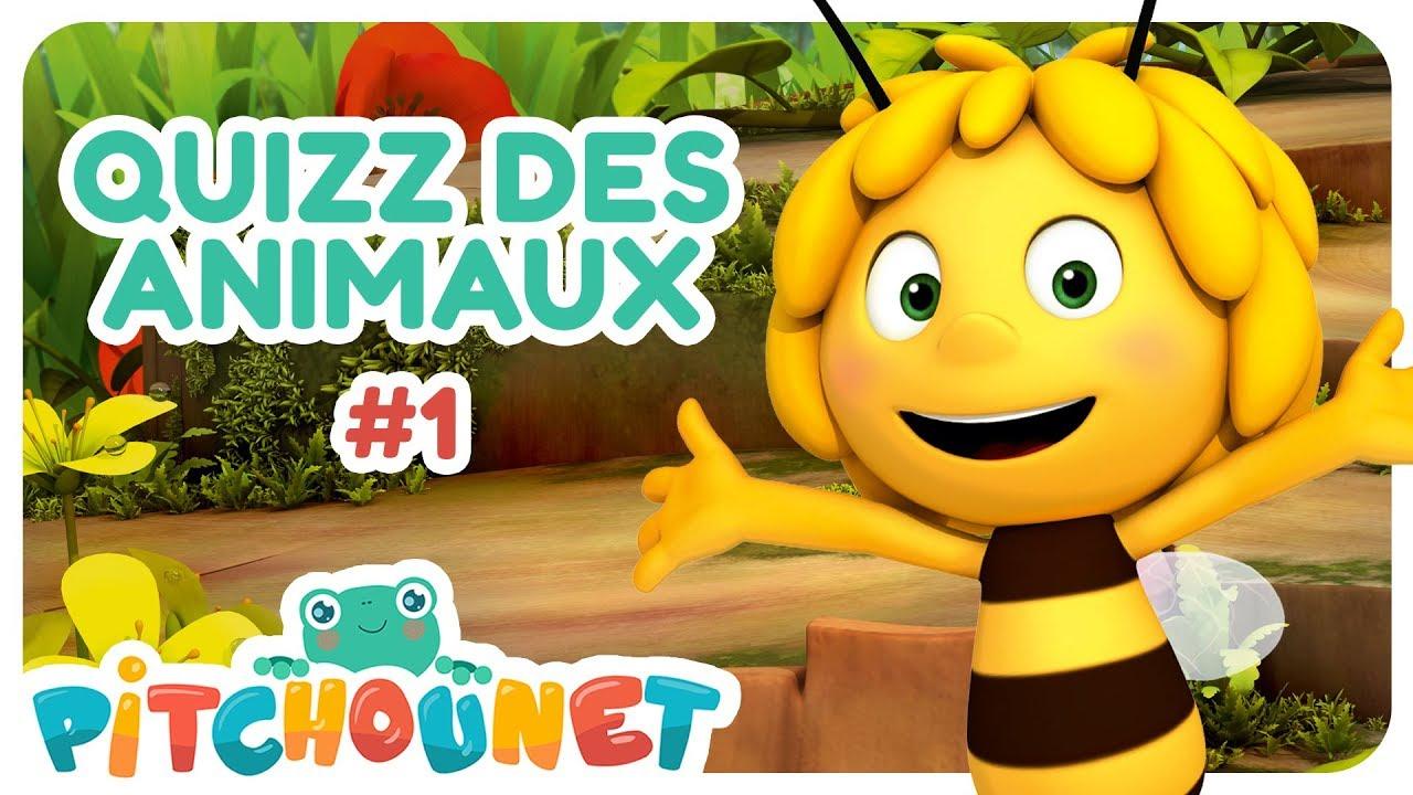 Quizz Des Animaux #1 | Dessin Animé Pour Enfant | Pitchounet pour Rebus Enfant