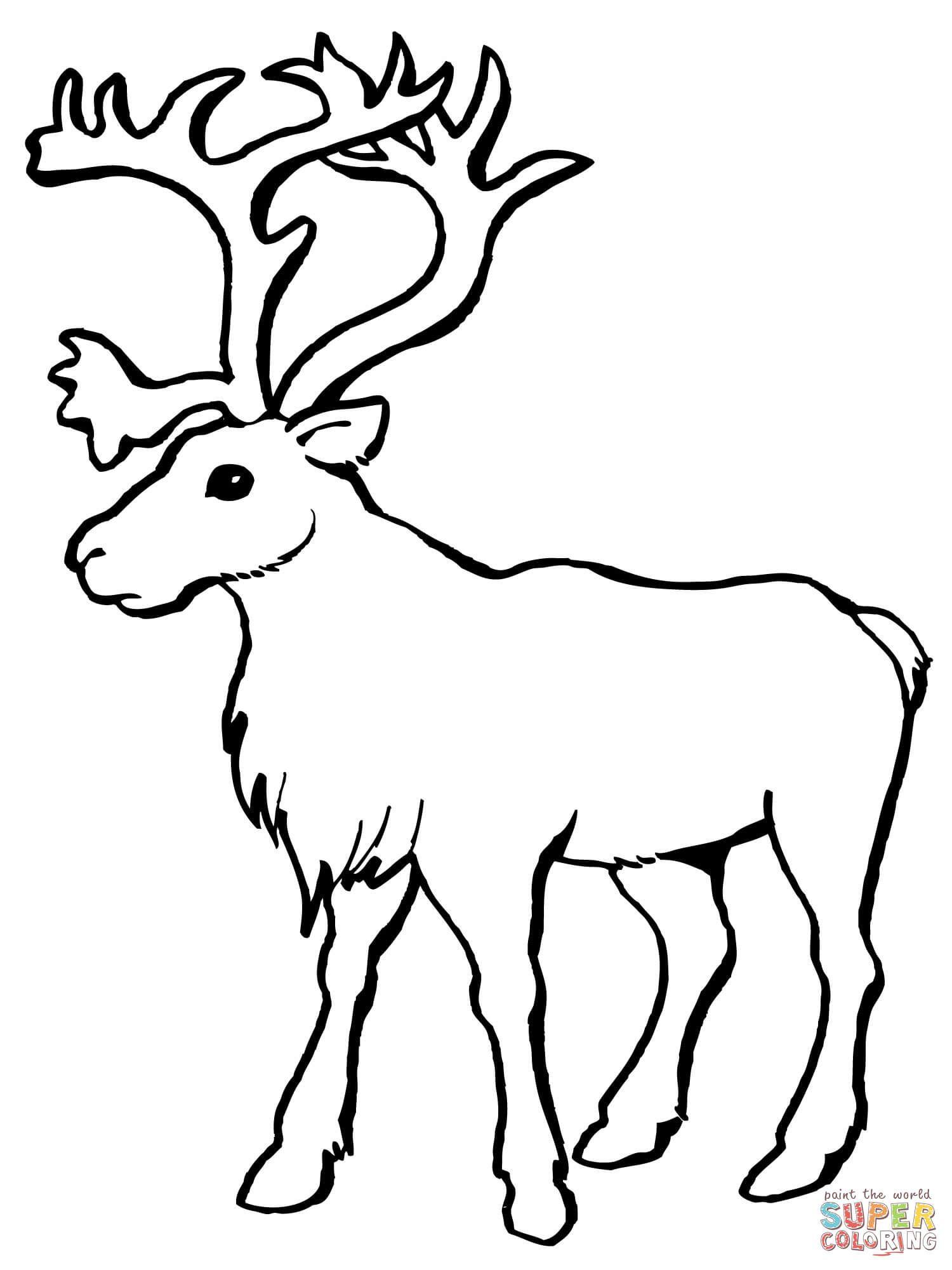 Reindeer Caribou Coloring Page | Free Printable Coloring avec Caribou Dessin