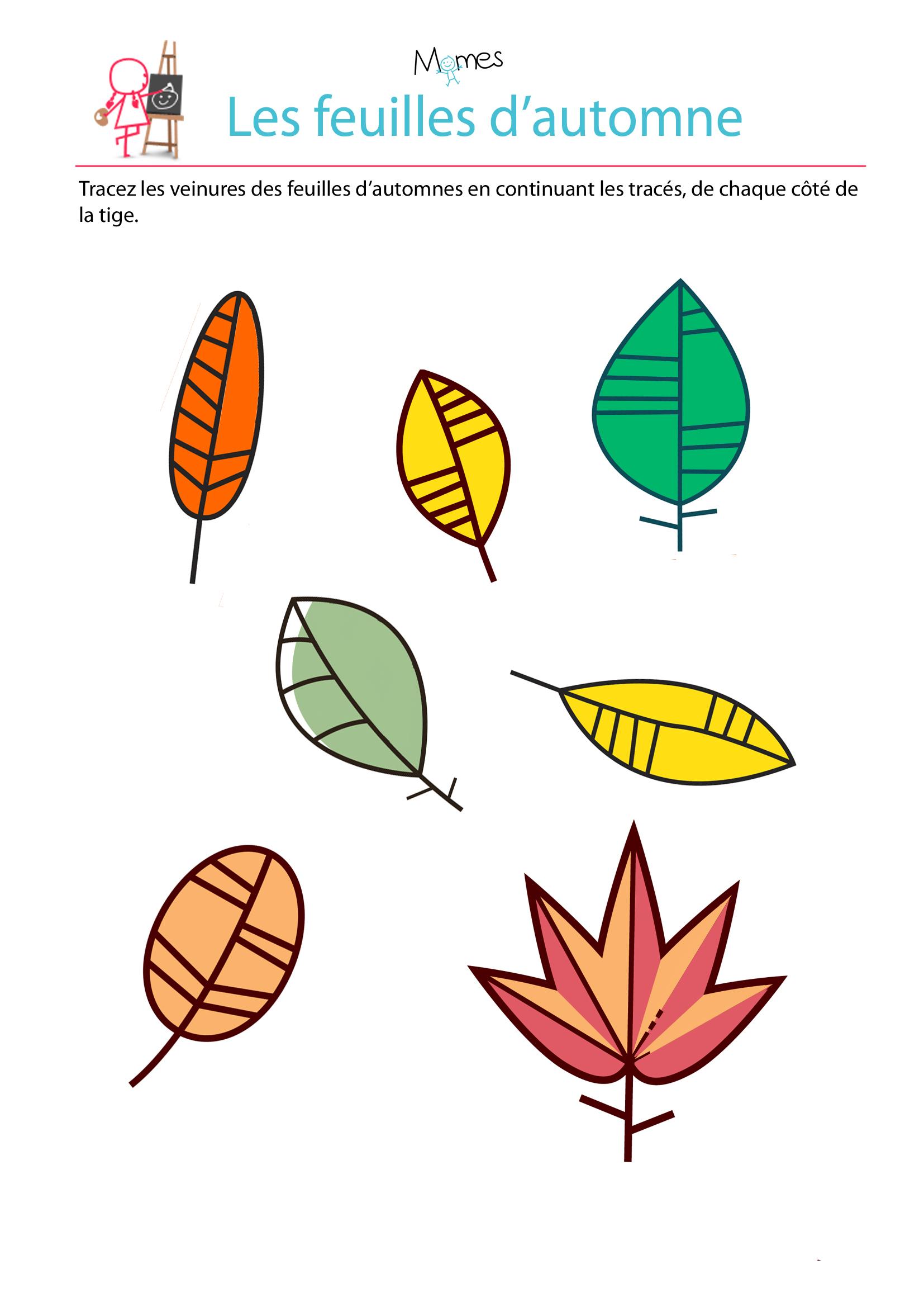Reproduction Symétrique: Les Feuilles D'automne - Momes serapportantà Dessin Symétrique A Imprimer