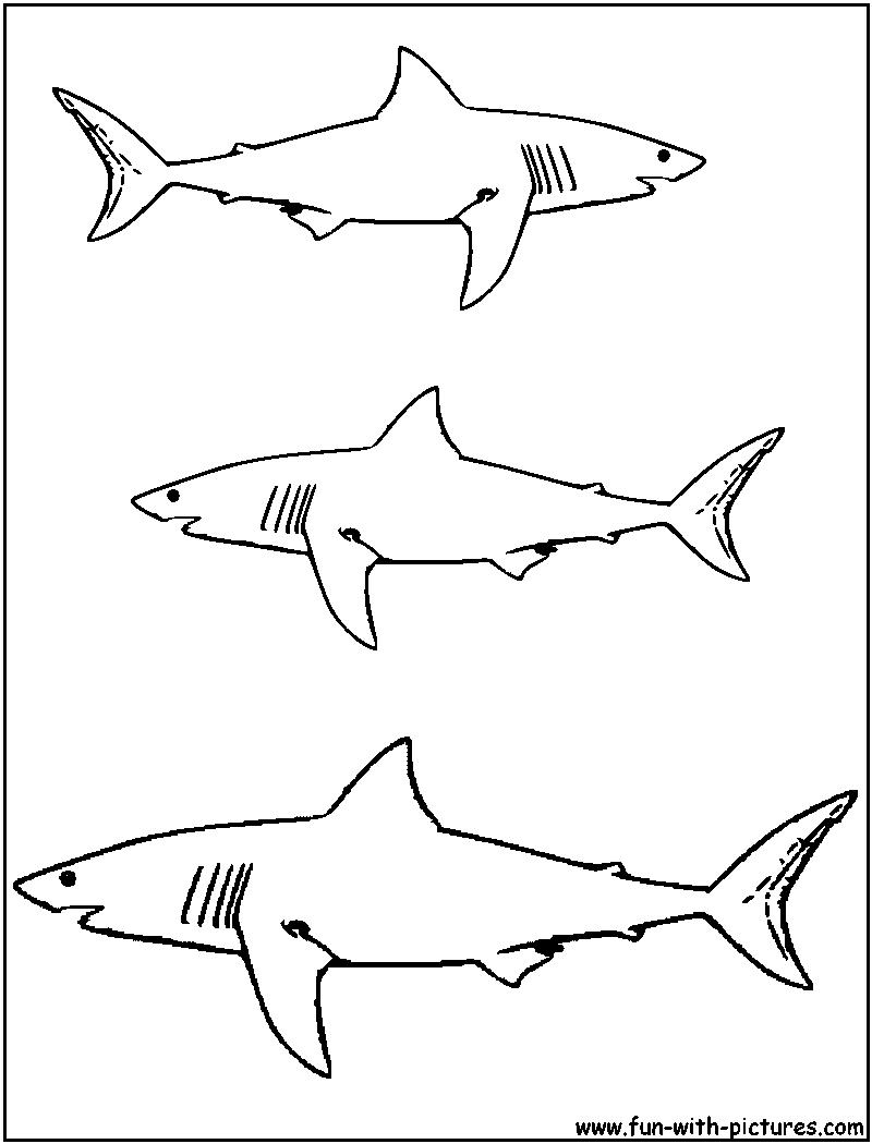 Requin #14 (Animaux) – Coloriages À Imprimer destiné Dessin De Requin À Imprimer