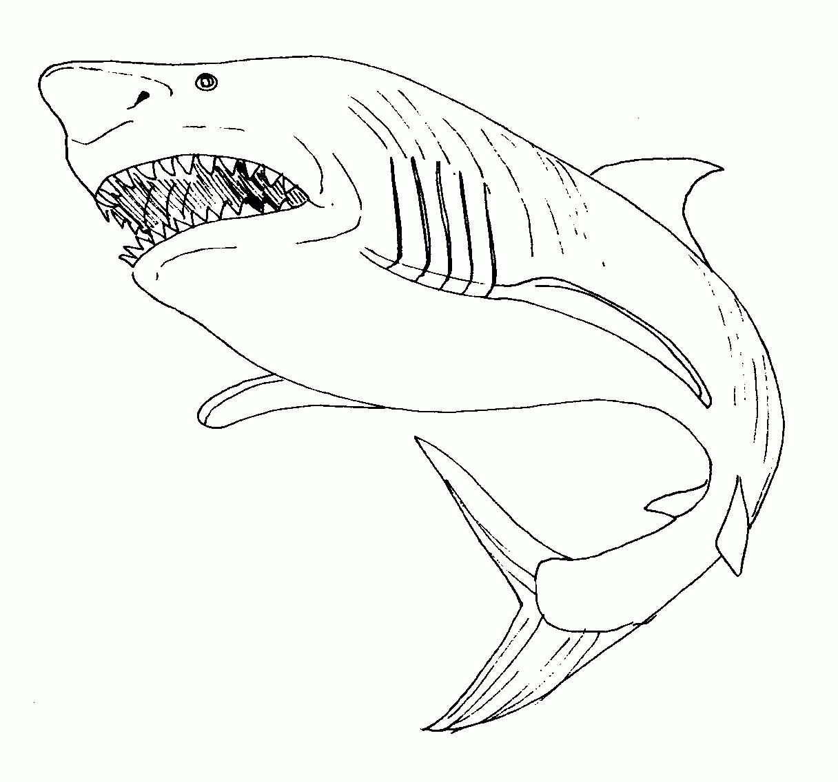 Requin #58 (Animaux) – Coloriages À Imprimer encequiconcerne Coloriage Requin À Imprimer