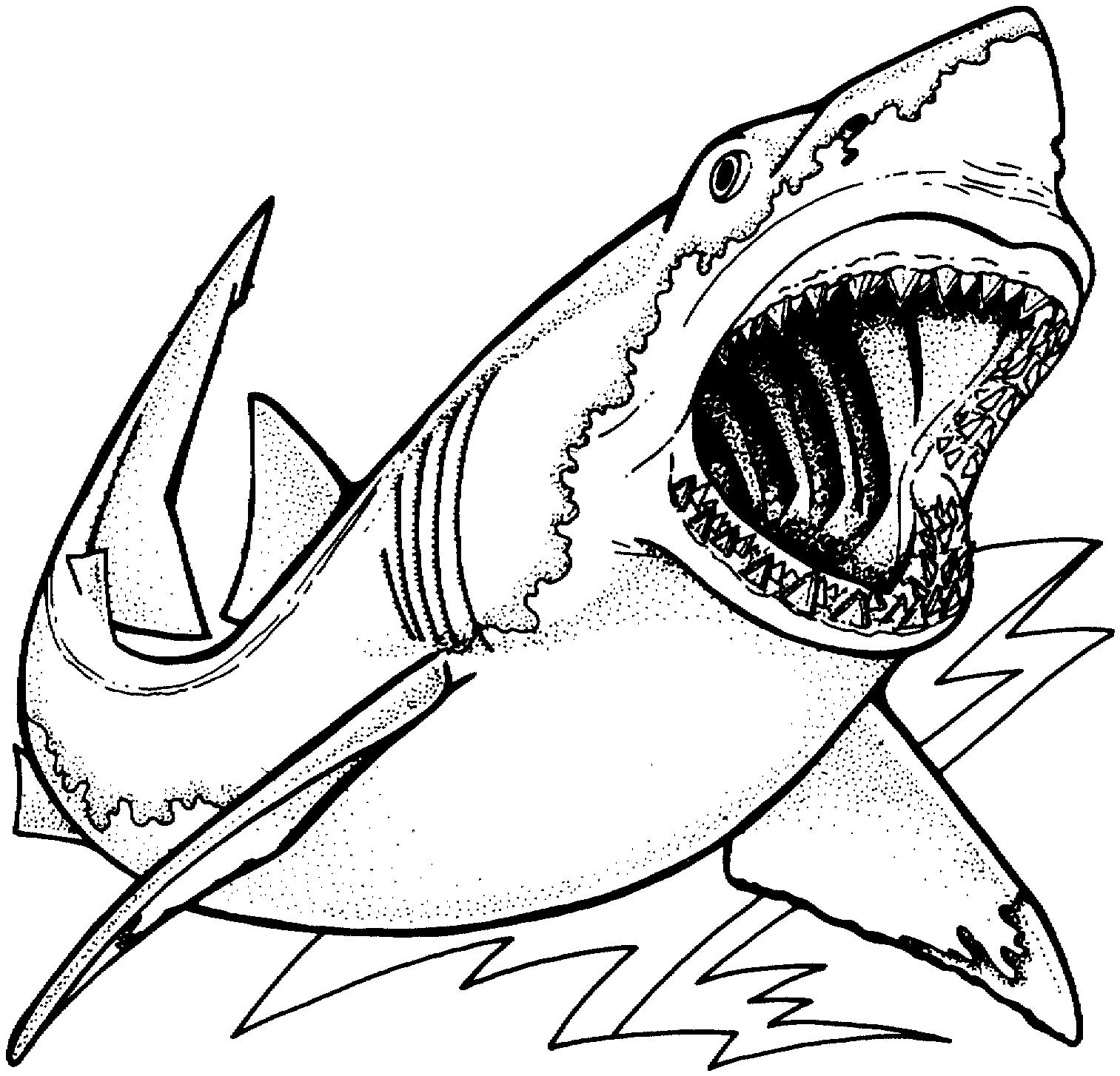 Requin #96 (Animaux) – Coloriages À Imprimer avec Coloriage Requin Blanc Imprimer